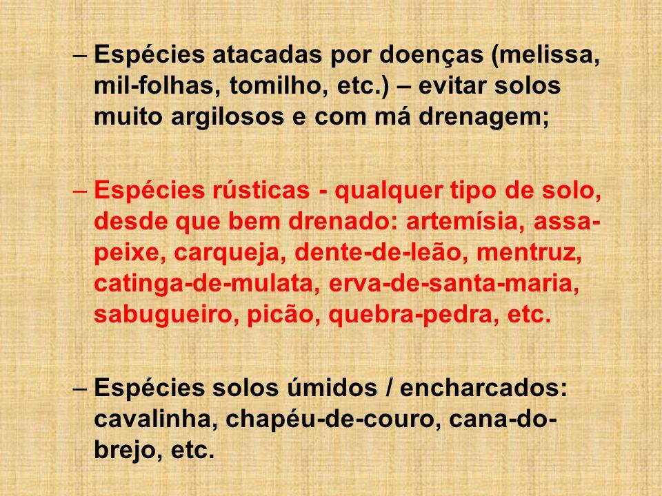 –Espécies atacadas por doenças (melissa, mil-folhas, tomilho, etc.) – evitar solos muito argilosos e com má drenagem; –Espécies rústicas - qualquer ti