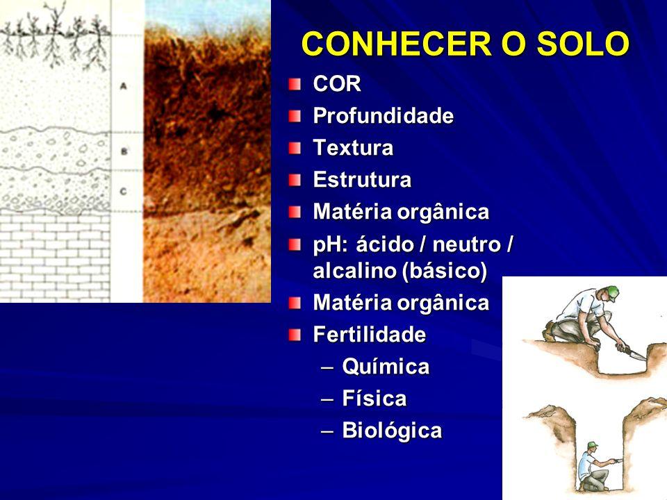 CONHECER O SOLO CORProfundidadeTexturaEstrutura Matéria orgânica pH: ácido / neutro / alcalino (básico) Matéria orgânica Fertilidade –Química –Física