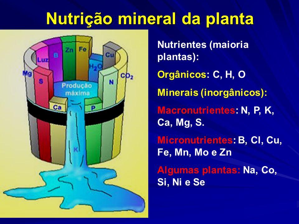 Nutrição mineral da planta Nutrientes (maioria plantas): Orgânicos: C, H, O Minerais (inorgânicos): Macronutrientes: N, P, K, Ca, Mg, S. Micronutrient