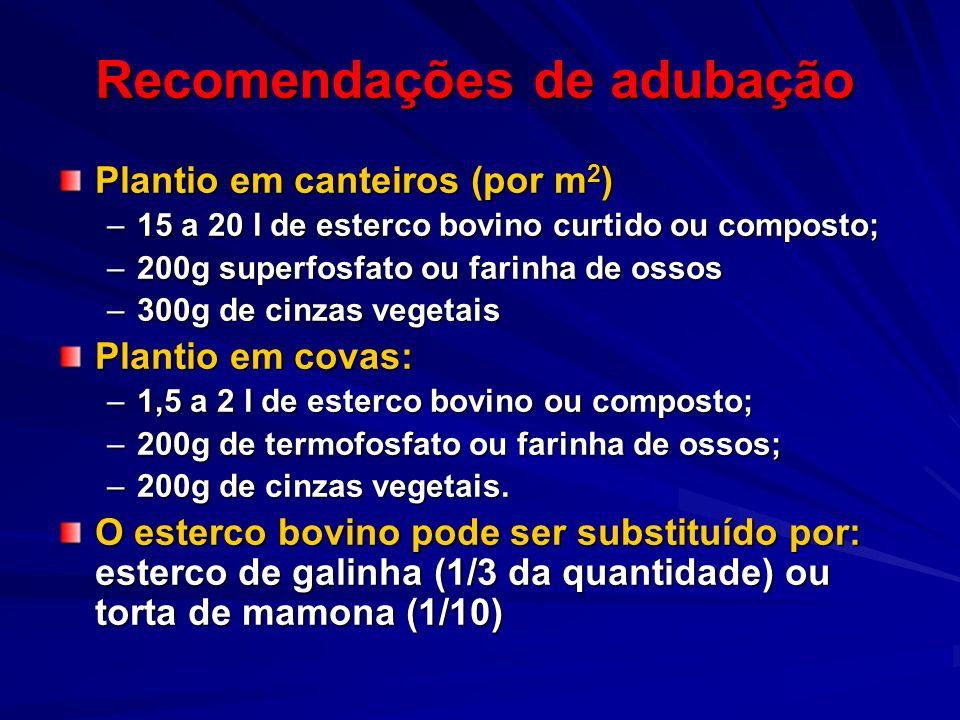 Recomendações de adubação Plantio em canteiros (por m 2 ) –15 a 20 l de esterco bovino curtido ou composto; –200g superfosfato ou farinha de ossos –30