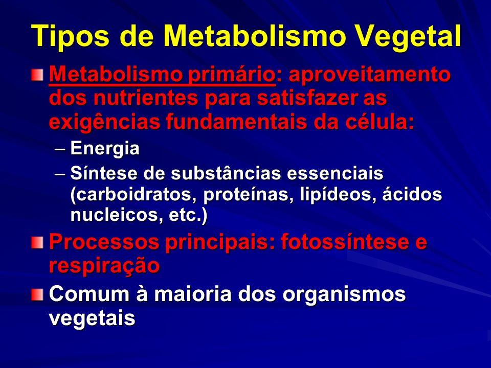 Tipos de Metabolismo Vegetal Metabolismo primário: aproveitamento dos nutrientes para satisfazer as exigências fundamentais da célula: –Energia –Sínte