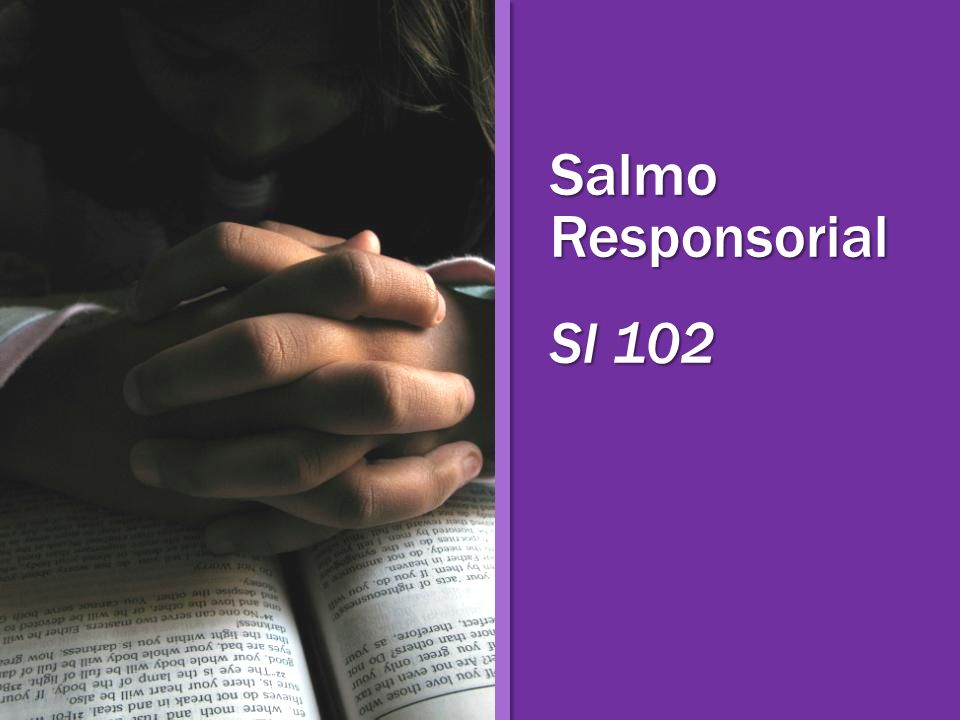 Salmo Responsorial Sl 102