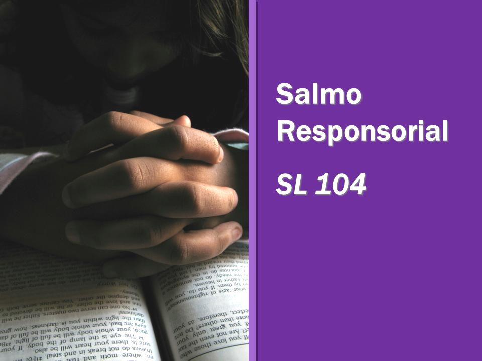 Salmo Responsorial SL 104