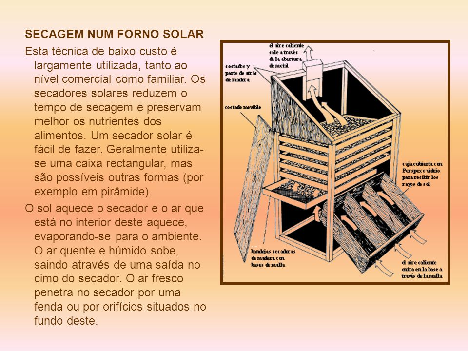 SECAGEM NUM FORNO SOLAR Esta técnica de baixo custo é largamente utilizada, tanto ao nível comercial como familiar. Os secadores solares reduzem o tem