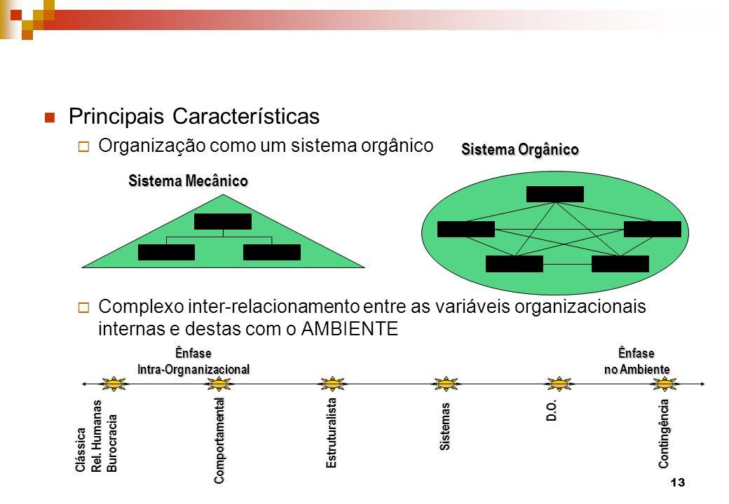 Principais Características Organização como um sistema orgânico Complexo inter-relacionamento entre as variáveis organizacionais internas e destas com