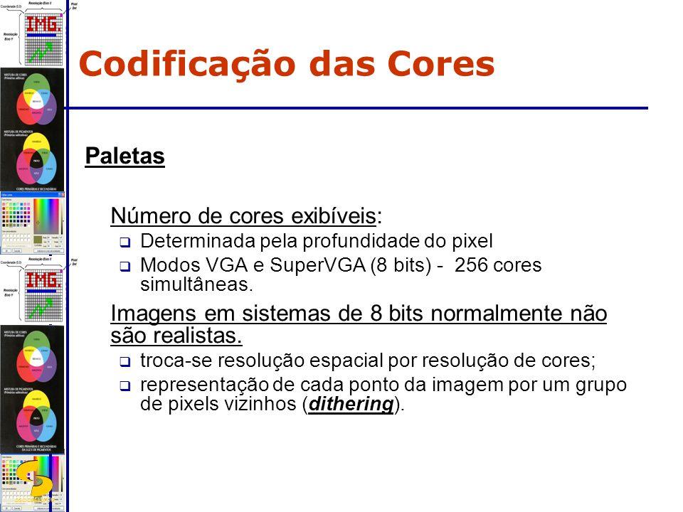 DSC/CEEI/UFCG Paletas Número de cores exibíveis: Determinada pela profundidade do pixel Modos VGA e SuperVGA (8 bits) - 256 cores simultâneas. Imagens