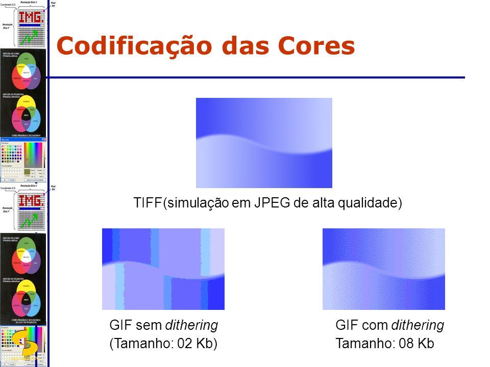 DSC/CEEI/UFCG TIFF(simulação em JPEG de alta qualidade) GIF sem dithering (Tamanho: 02 Kb) GIF com dithering Tamanho: 08 Kb Codificação das Cores