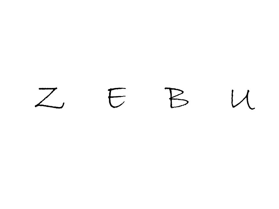 Z E B U