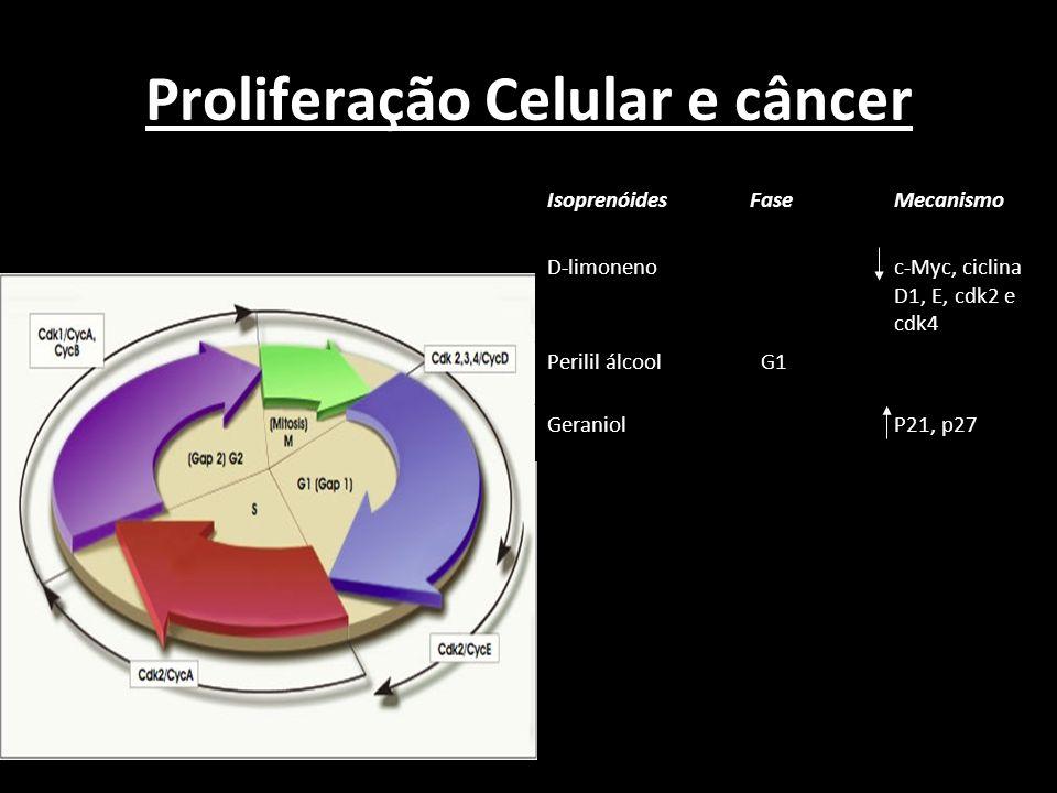 Proliferação Celular e câncer Isoprenóides FaseMecanismo D-limoneno c-Myc, ciclina D1, E, cdk2 e cdk4 Perilil álcool G1 GeraniolP21, p27