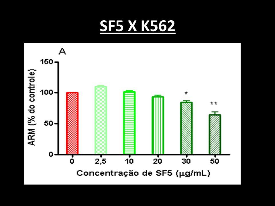 SF5 X K562