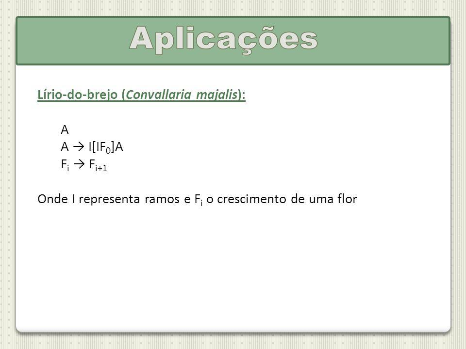 Lírio-do-brejo (Convallaria majalis): A A I[IF 0 ]A F i F i+1 Onde I representa ramos e F i o crescimento de uma flor