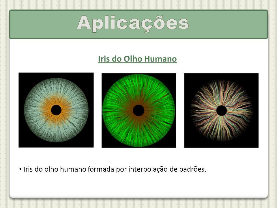 Iris do Olho Humano Iris do olho humano formada por interpolação de padrões.