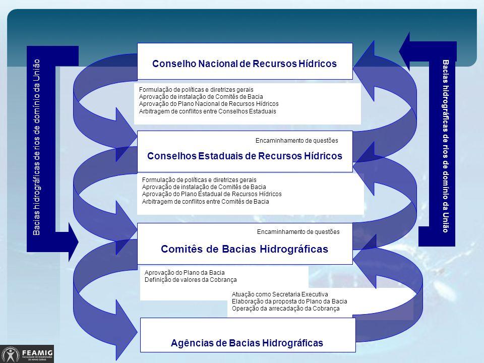 Aprovação do Plano da Bacia Definição de valores da Cobrança Atuação como Secretaria Executiva Elaboração da proposta do Plano da Bacia Operação da ar