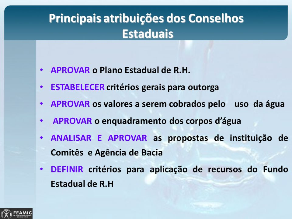 Principais atribuições dos Conselhos Estaduais APROVAR o Plano Estadual de R.H. ESTABELECER critérios gerais para outorga APROVAR os valores a serem c
