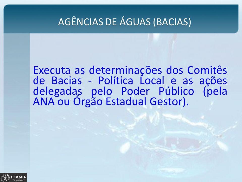 Executa as determinações dos Comitês de Bacias - Política Local e as ações delegadas pelo Poder Público (pela ANA ou Órgão Estadual Gestor). AGÊNCIAS