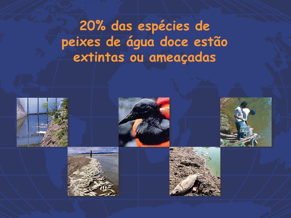 Instrumentos da Política Nacional de Recursos Hídricos (Art.