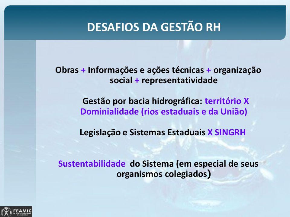 DESAFIOS DA GESTÃO RH Obras + Informações e ações técnicas + organização social + representatividade Gestão por bacia hidrográfica: território X Domin