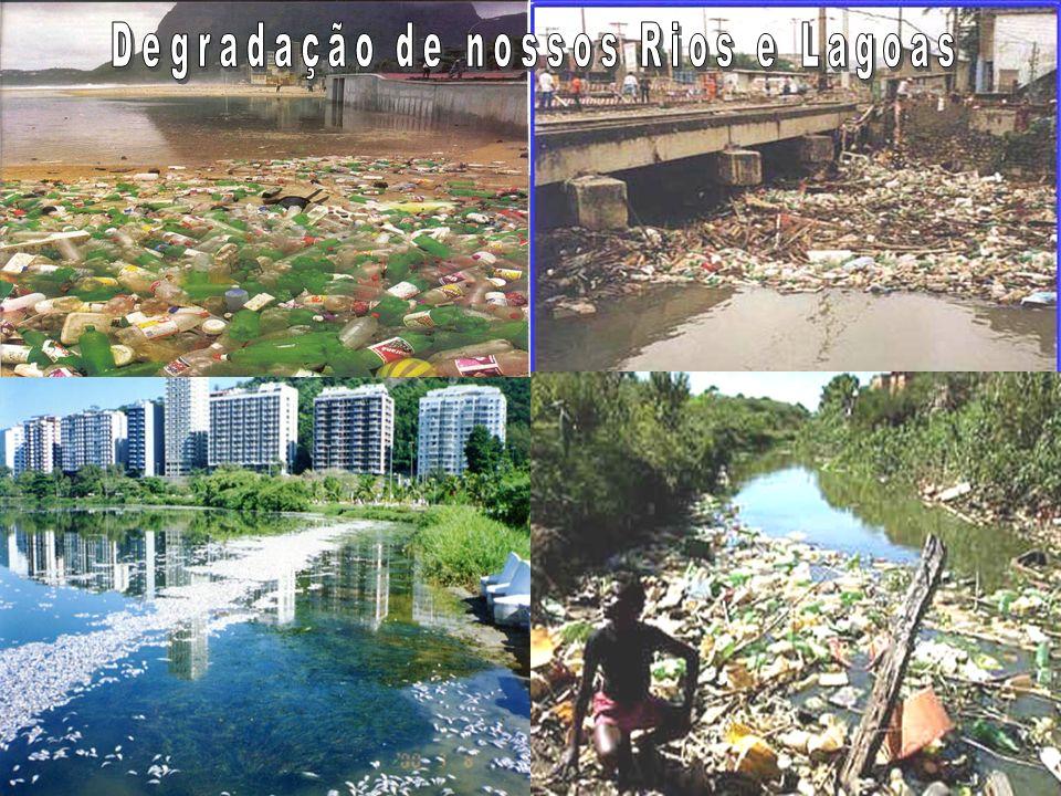 Enchentes urbanas Saneamento insuficiente Conseqüências da Ocupação Desordenada Construções nas margens dos rios