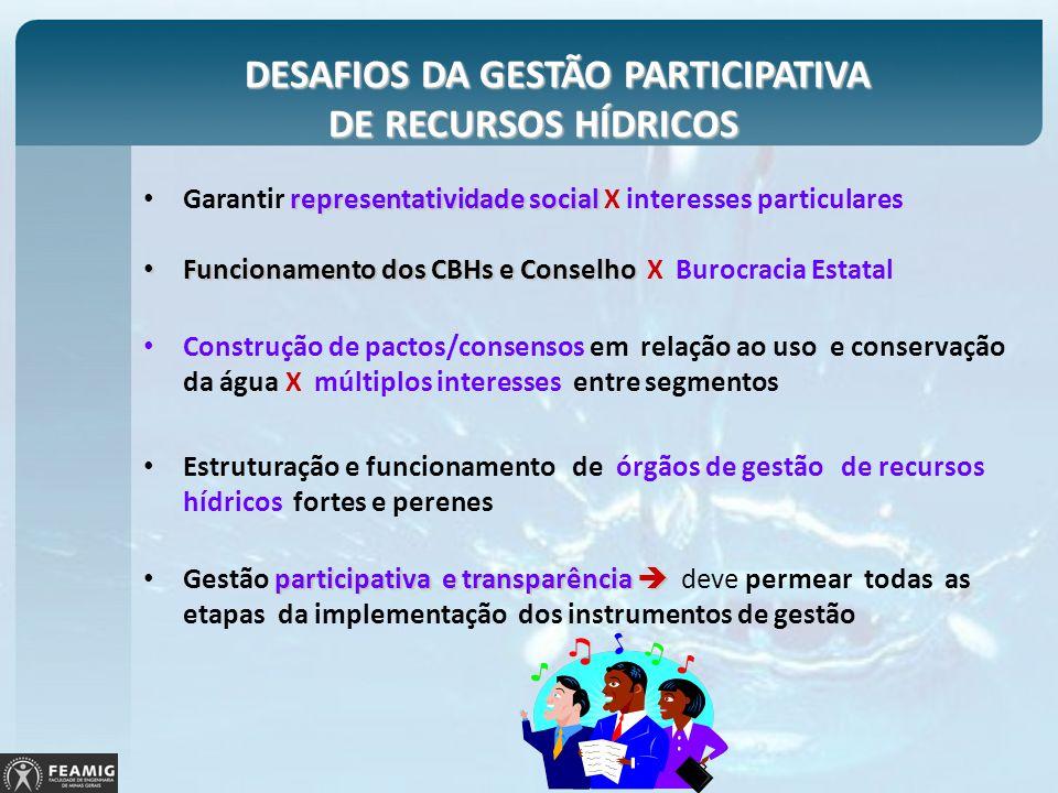 DESAFIOS DA GESTÃO PARTICIPATIVA DE RECURSOS HÍDRICOS DESAFIOS DA GESTÃO PARTICIPATIVA DE RECURSOS HÍDRICOS representatividade social Garantir represe