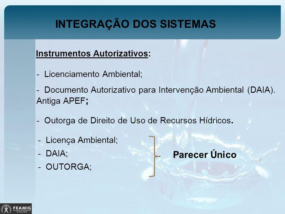 INTEGRAÇÃO DOS SISTEMAS Instrumentos Autorizativos: - Licenciamento Ambiental; ; - Documento Autorizativo para Intervenção Ambiental (DAIA). Antiga AP