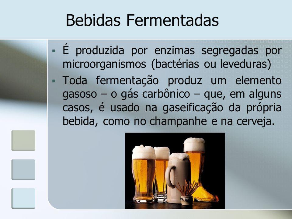 Bebidas Fermentadas É produzida por enzimas segregadas por microorganismos (bactérias ou leveduras) Toda fermentação produz um elemento gasoso – o gás