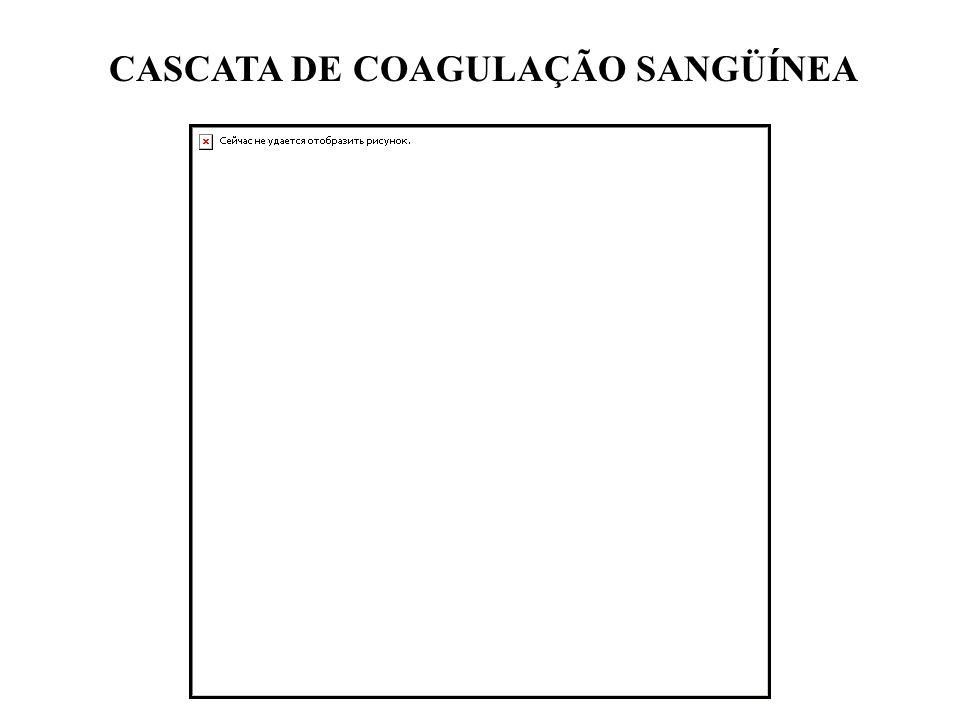 CASCATA DE COAGULAÇÃO SANGÜÍNEA
