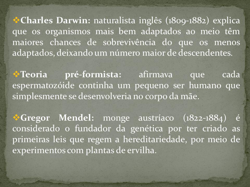 Charles Darwin: naturalista inglês (1809-1882) explica que os organismos mais bem adaptados ao meio têm maiores chances de sobrevivência do que os men