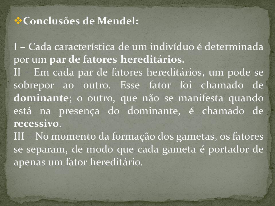 Conclusões de Mendel: I – Cada característica de um indivíduo é determinada por um par de fatores hereditários. II – Em cada par de fatores hereditári