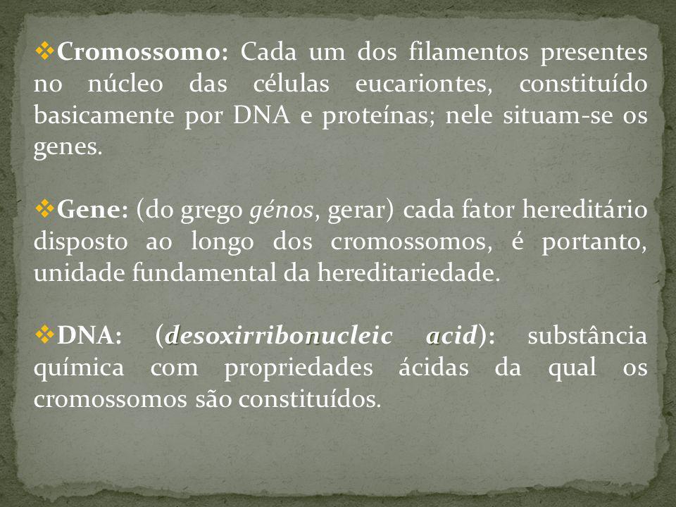 Cromossomo: Cada um dos filamentos presentes no núcleo das células eucariontes, constituído basicamente por DNA e proteínas; nele situam-se os genes.