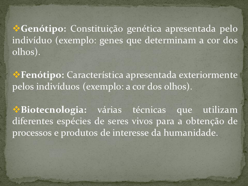 Genótipo: Constituição genética apresentada pelo indivíduo (exemplo: genes que determinam a cor dos olhos). Fenótipo: Característica apresentada exter