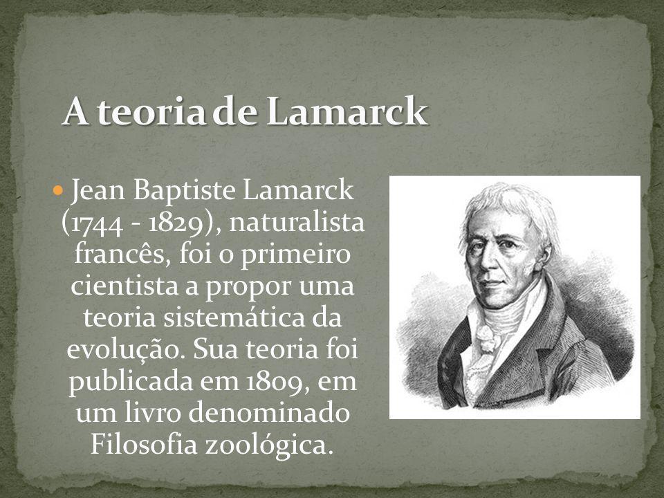Jean Baptiste Lamarck (1744 - 1829), naturalista francês, foi o primeiro cientista a propor uma teoria sistemática da evolução. Sua teoria foi publica