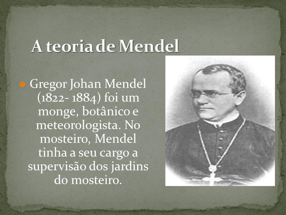 Gregor Johan Mendel (1822- 1884) foi um monge, botânico e meteorologista. No mosteiro, Mendel tinha a seu cargo a supervisão dos jardins do mosteiro.