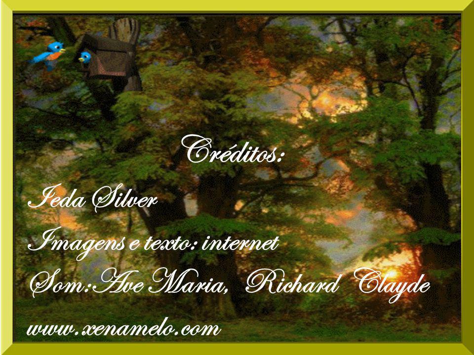 Créditos: Ieda Silver Imagens e texto: internet Som:Ave Maria, Richard Clayde www.xenamelo.com