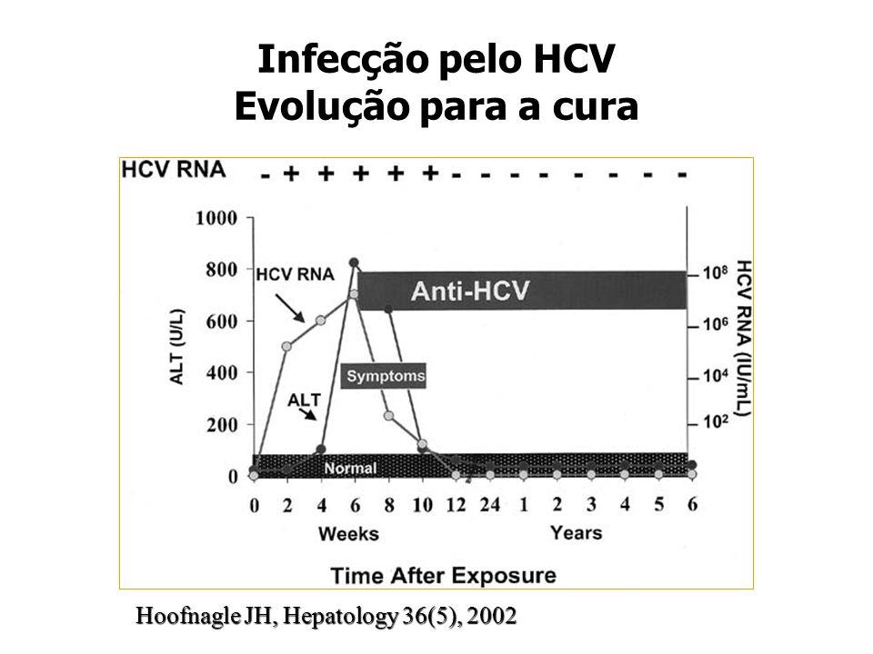 Infecção pelo HCV Evolução para a cura Hoofnagle JH, Hepatology 36(5), 2002