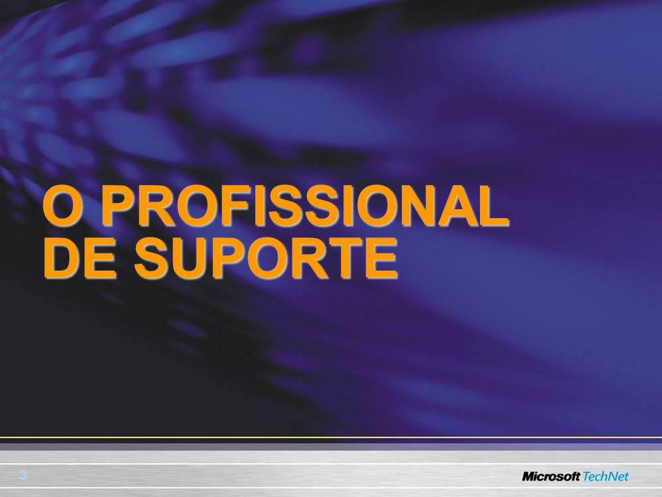 3 O PROFISSIONAL DE SUPORTE
