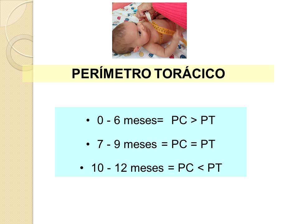 0 - 6 meses= PC > PT 7 - 9 meses = PC = PT 10 - 12 meses = PC < PT PERÍMETRO TORÁCICO