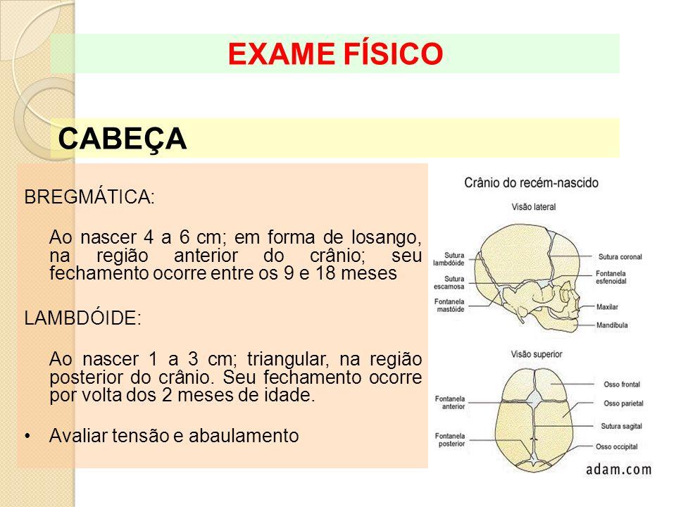REFLEXOS EXAME FÍSICO Reflexo cutâneo-plantar ou Babinski: Faz-se um estímulo na região lateral externa do pé, no sentido do calcanhar para os dedos, ele deverá responder com extensão dos dedos.
