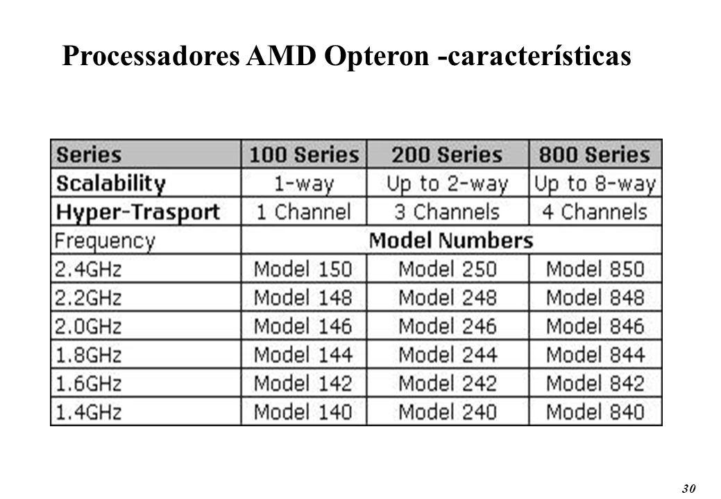 30 Processadores AMD Opteron -características