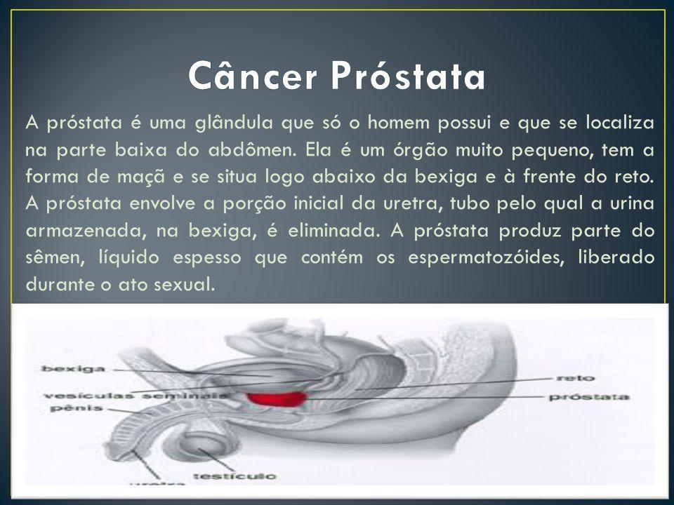 A próstata é uma glândula que só o homem possui e que se localiza na parte baixa do abdômen. Ela é um órgão muito pequeno, tem a forma de maçã e se si
