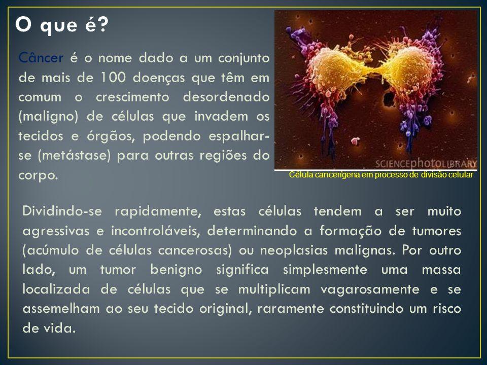 Câncer é o nome dado a um conjunto de mais de 100 doenças que têm em comum o crescimento desordenado (maligno) de células que invadem os tecidos e órg