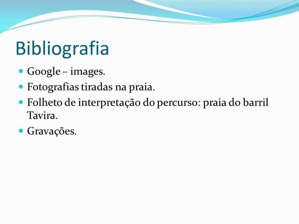 Bibliografia Google – images. Fotografias tiradas na praia. Folheto de interpretação do percurso: praia do barril Tavira. Gravações.
