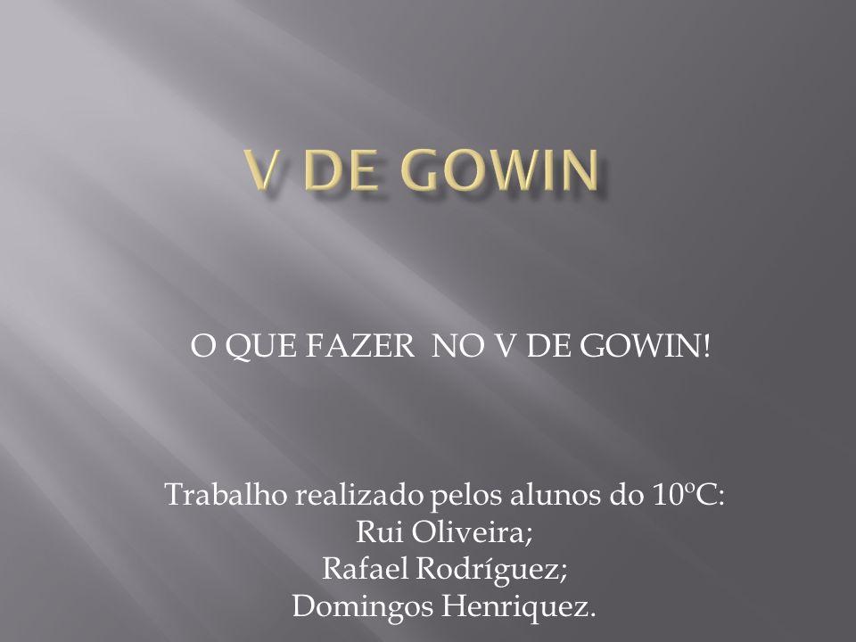 O QUE FAZER NO V DE GOWIN! Trabalho realizado pelos alunos do 10ºC: Rui Oliveira; Rafael Rodríguez; Domingos Henriquez.