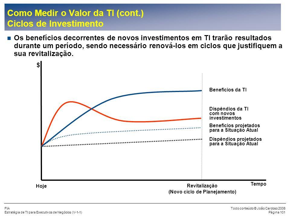 FIA Estratégia de TI para Executivos de Negócios (V-1-1) Todo conteúdo © João Cardoso 2006 Página 100 Como Medir o Valor da TI (cont.) Custos Os inves