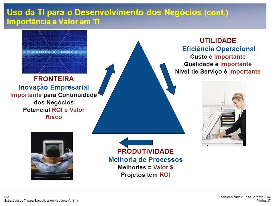 FIA Estratégia de TI para Executivos de Negócios (V-1-1) Todo conteúdo © João Cardoso 2006 Página 36 Inovação = Capacidade de TI Melhorias em Processo