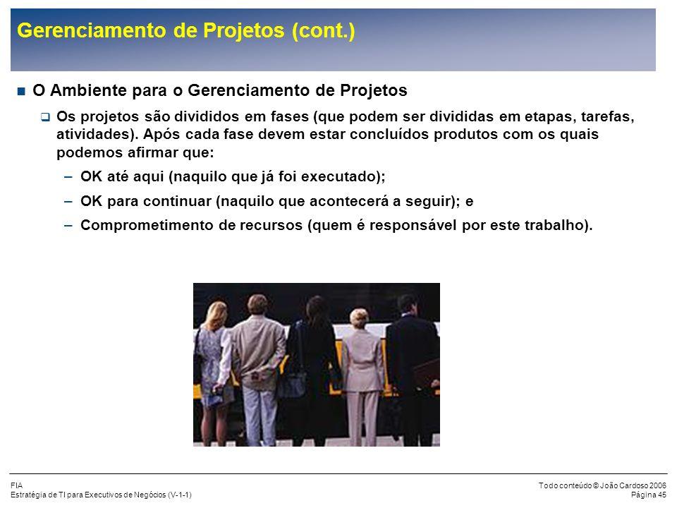 FIA Estratégia de TI para Executivos de Negócios (V-1-1) Todo conteúdo © João Cardoso 2006 Página 44 Gerenciamento de Projetos (cont.) O que é Gerenci