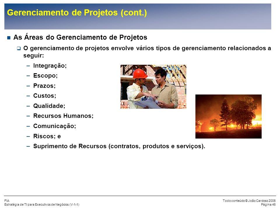 FIA Estratégia de TI para Executivos de Negócios (V-1-1) Todo conteúdo © João Cardoso 2006 Página 45 Gerenciamento de Projetos (cont.) O Ambiente para