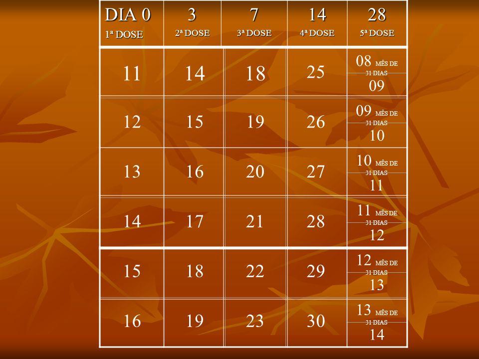 11 14 18 25 08 MÊS DE 31 DIAS 09 12 15 19 26 09 MÊS DE 31 DIAS 10 13 16 20 27 10 MÊS DE 31 DIAS 11 14 17 21 28 11 MÊS DE 31 DIAS 12 15 18 22 29 12 MÊS