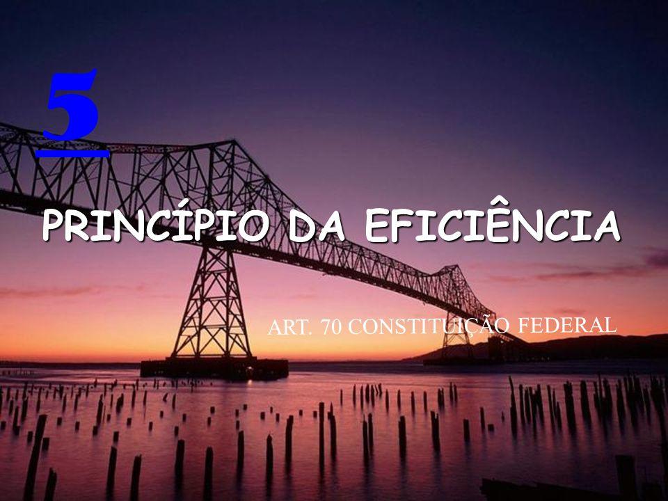 5 PRINCÍPIO DA EFICIÊNCIA ART. 70 CONSTITUIÇÃO FEDERAL