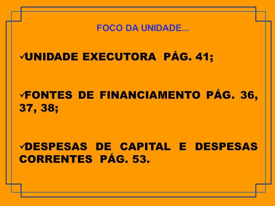 UNIDADE EXECUTORA PÁG. 41; FONTES DE FINANCIAMENTO PÁG. 36, 37, 38; DESPESAS DE CAPITAL E DESPESAS CORRENTES PÁG. 53. FOCO DA UNIDADE...