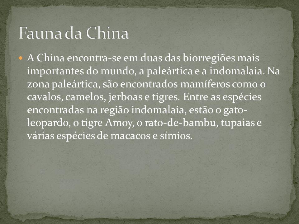 A China encontra-se em duas das biorregiões mais importantes do mundo, a paleártica e a indomalaia. Na zona paleártica, são encontrados mamíferos como